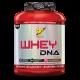 DNA WHEY - 1,87 KG.
